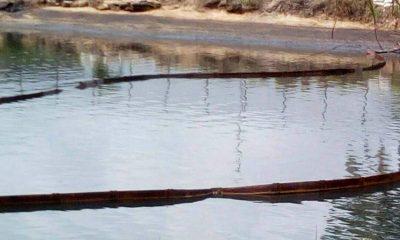 BRASS OIL TERMINAL POLLUTION