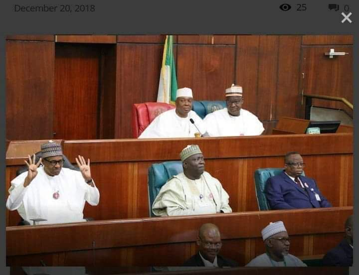 Photo of the Year: Buhari's 4+4